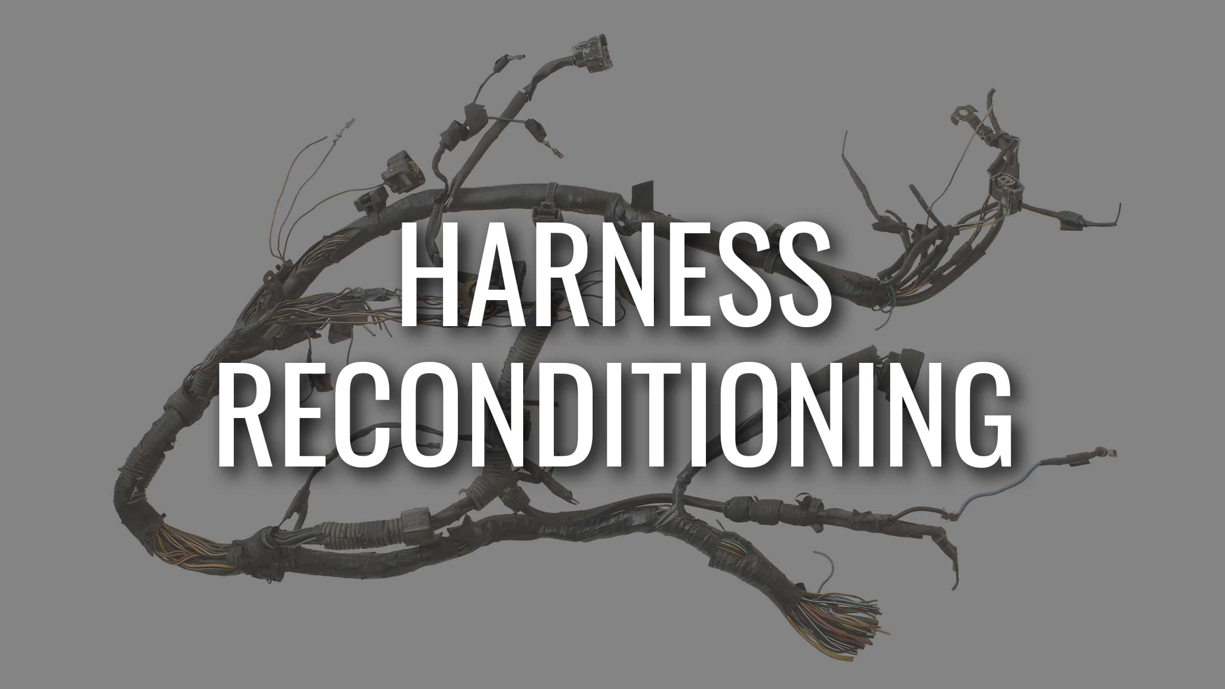 Grid-Harness-Reconditioning-1.1
