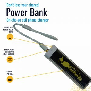 Cell phone charger, power bank